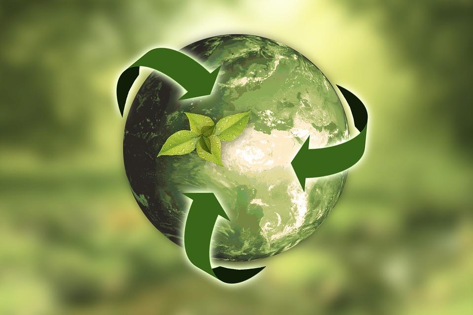 Zwingen uns die Grenzen des Wachstums zum nachhaltigen Wirtschaften? Von der Wachstums- zur Postwachstumsgesellschaft