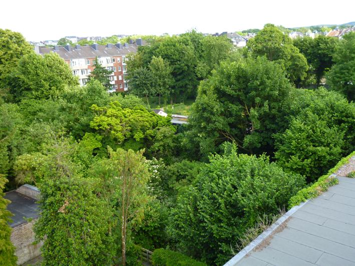 Die Aachener Bürgerinitiative 'Luisenhöfe' setzt sich für eine nachhaltige Quartiersentwicklung ein