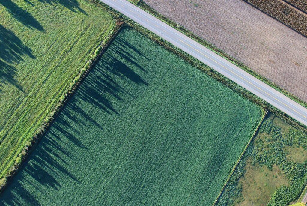 Leserbrief in AN, zur Europäischen Agrarreform von Jan Salzmann