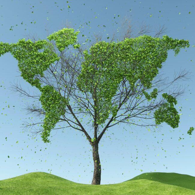 Was ist ein neues Wirtschaftsmodell für ein gutes Leben und Arbeiten im gemeinsamen globalen Haus?
